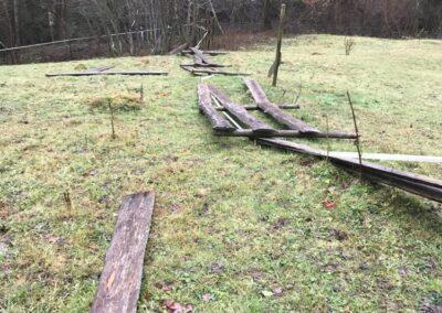 tier-asyl-huebeli-01-2018-IMG_0321